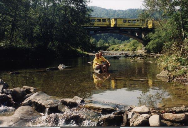 most w głębi